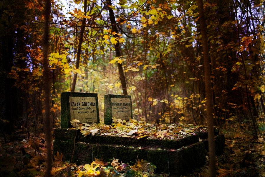 cmentarz zydowski ... JuliaMolner