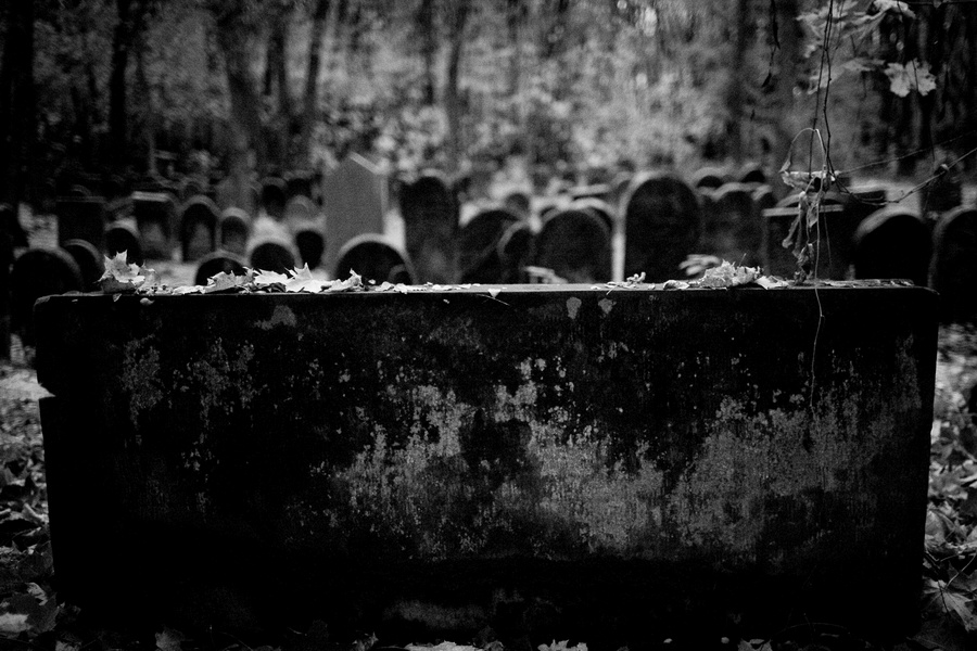 cmentarz zydowski... julia molner